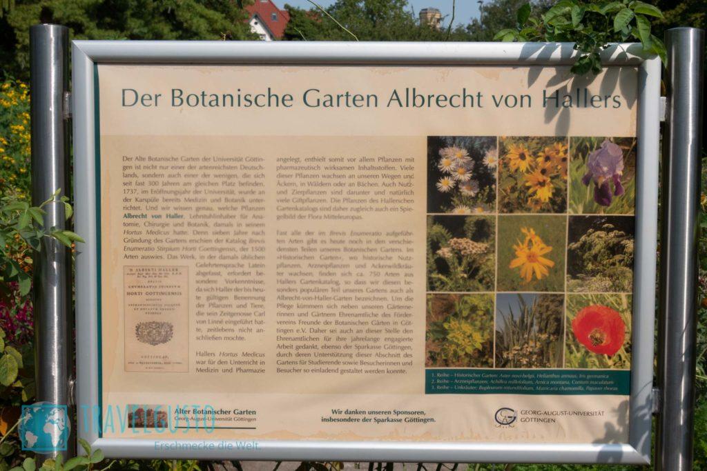Der Botanische Garten Albrechts von Hallers